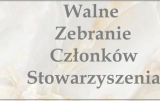 Wstęga Kociewia - ONYXOWY spiek kwarcowy 180X90 PODLOGA SCIANA